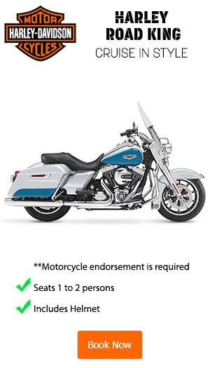 Harley Davidson Road King Rentals